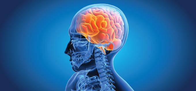 ศูนย์สมองและระบบประสาท