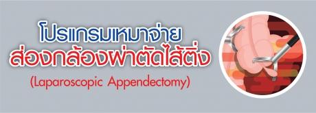 โปรแกรมเหมาจ่ายผ่าตัดไส้ติ่ง (Laparoscopic Appendectomy)