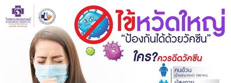 แพคเกจวัคซีนป้องกันไข้หวัดใหญ่ สำหรับผู้ใหญ่