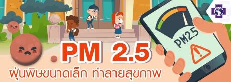 PM 2.5 ฝุ่นพิษขนาดเล็กทำลายสุขภาพ