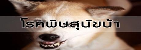 วันที่ 28 กันยายน เป็นวันป้องกันพิษสุนัขบ้า